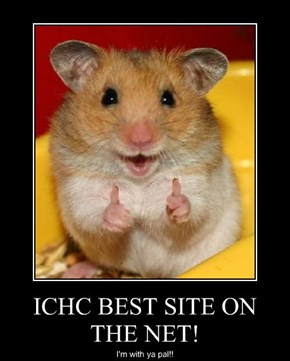 ICHC BEST SITE ON THE NET!