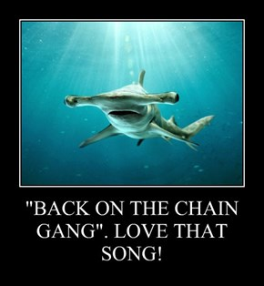 """BACK ON THE CHAIN GANG"". LOVE THAT SONG!"