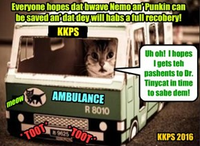 After teh feroshush Monster of the Liberry wer soundly defeated, Mr. Awlthumbs transports teh combatants Nemo an' Punkin to teh First Aid Station at teh St. Francis Shelter to be eggsamined and treated by Dr. Tinycat..