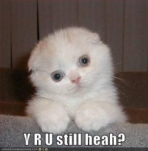 Y R U still heah?