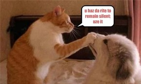 u haz da rite to remain silent; uze it
