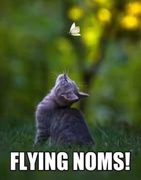 FLYING NOMS!