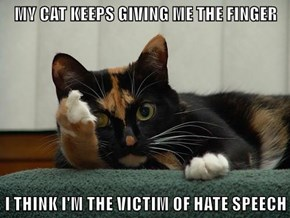 MY CAT KEEPS GIVING ME THE FINGER  I THINK I'M THE VICTIM OF HATE SPEECH