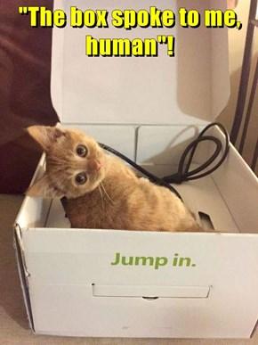 """The box spoke to me, human""!"