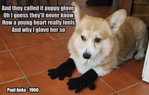 this is NOT? a puppy glove?