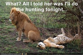 What? All I told her was I'll do the hunting tonight...