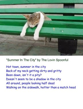 """""""Summer In The City"""" by The Lovin Spoonful (recaption: http://builder.cheezburger.com/builder?tiid=10115125"""