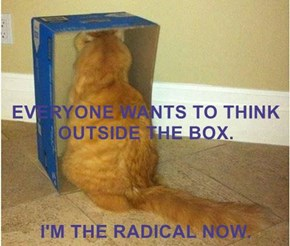 EVERYONE WANTS TO THINK OUTSIDE THE BOX. I'M THE RADICAL NOW.