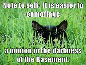 Note to self:  It is easier to camoflage  a minion in the darkness of the Basement.