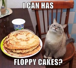 I CAN HAS  FLOPPY CAKES?