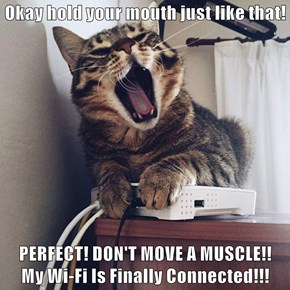 Okay hold your mouth just like that!  PERFECT! DON'T MOVE A MUSCLE!!               My Wi-Fi Is Finally Connected!!!