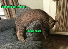Monorail Cat trainee                                                         failing exam