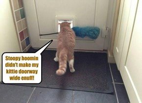 Stoopy hoomin..