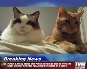 Breaking News - Punkin & Missy decide that Punkin should go back to work and Missy will stay home for now, until they decide on a nanny.