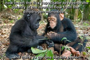 ...now insert the flux capacitator to reverse the polarity of the neutron flow from the dihydrogen monoxide...   ...and there ya go- one banana peeler!