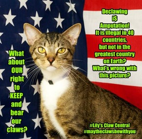 Declawing = Greed!