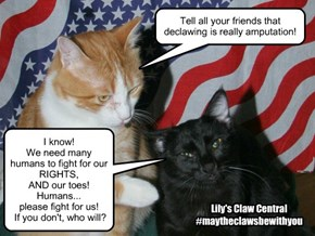 Declawing-American Greed!