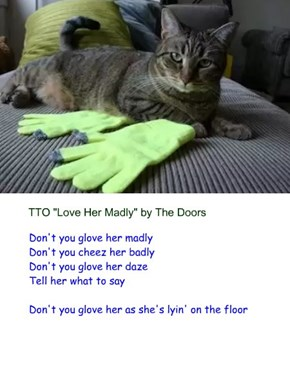 """""""Glove Her Madly"""" (TTO """"Love Her Madly"""" by The Doors)"""