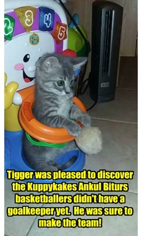 Tigger was pleased to discover the Kuppykakes Ankul Biturs  basketballers didn't have a goalkeeper yet.  He was sure to make the team!