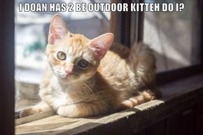 I DOAN HAS 2 BE OUTDOOR KITTEH DO I?