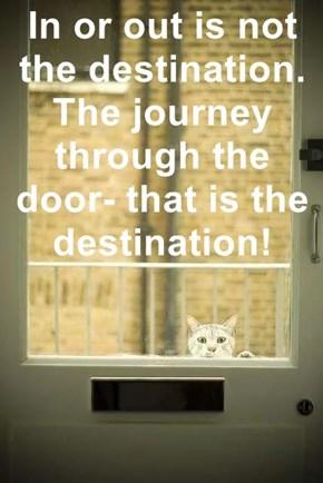The journey tis all