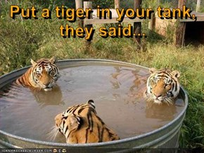 Put a tiger in your tank, they said...