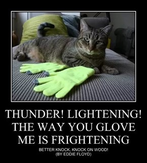 THUNDER! LIGHTENING!  THE WAY YOU GLOVE ME IS FRIGHTENING