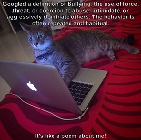 Googled a definition of Bullying: the use of force, threat, or coercion to abuse, intimidate, or aggressively dominate others. The behavior is often repeated and habitual.  It's like a poem about me!