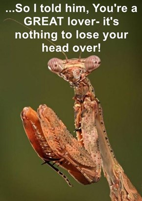 ...So I told him, You're a GREAT lover- it's nothing to lose your head over!