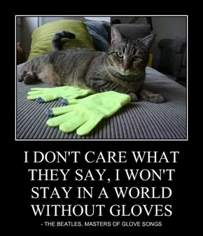I DON'T CARE WHAT THEY SAY, I WON'T STAY IN A WORLD WITHOUT GLOVES