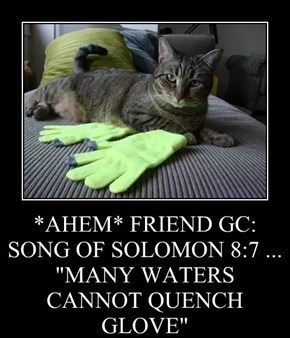 """*AHEM* FRIEND GC: SONG OF SOLOMON 8:7 ... """"MANY WATERS CANNOT QUENCH GLOVE"""""""