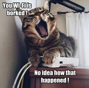 You Wi-Fi is borked !
