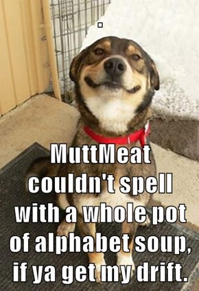 .  MuttMeat couldn't spell with a whole pot of alphabet soup, if ya get my drift.