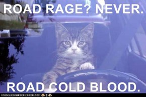 ROAD RAGE? NEVER.  ROAD COLD BLOOD.
