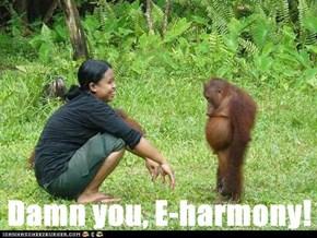 Damn you, E-harmony!