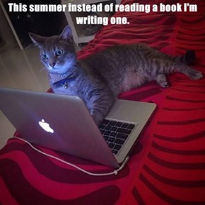 This summer instead of reading a book I'm writing one.