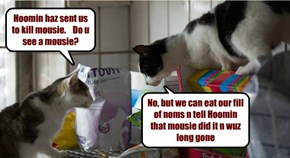 Kittehs Think Fast
