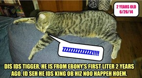 DIS IDS TIGGER, HE IS FROM EBONY'S FIRST LITER 2 YEARS AGO. ID SEH HE IDS KING OB HIZ NOO HAPPEH HOEM.
