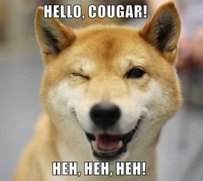 HELLO, COUGAR!                   HEH, HEH, HEH!
