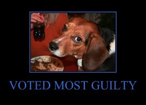 VOTED MOST GUILTY