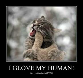 I GLOVE MY HUMAN!