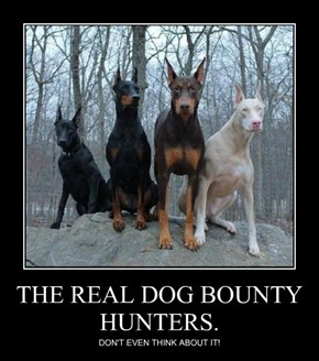 THE REAL DOG BOUNTY HUNTERS.