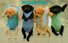 Jus hangin' round