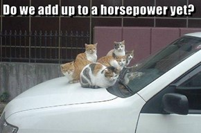 Do we add up to a horsepower yet?