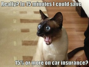 Really? In 15 minutes I could save  15% or more on car insurance?