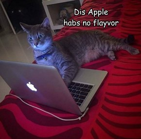Dis Apple habs no flayvor