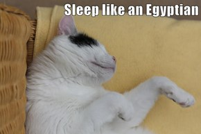 Sleep like an Egyptian