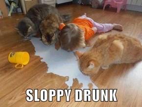 SLOPPY DRUNK