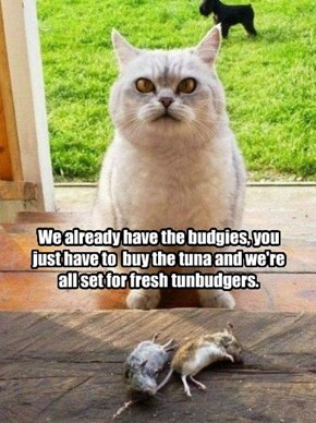 We already have the budgies, you just have to  buy the tuna and we're all set for fresh tunbudgers.