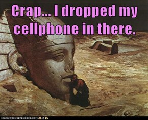 Crap... I dropped my cellphone in there.